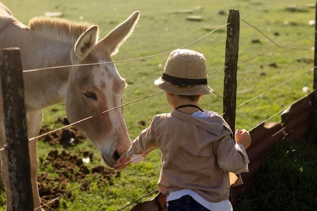 Criança de tiro médio acariciando o cavalo