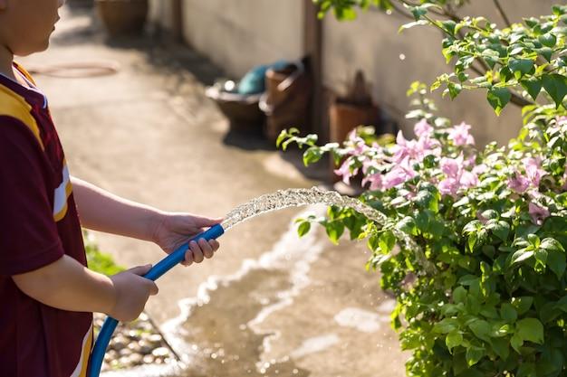 Criança despeje água para abrigar plantas