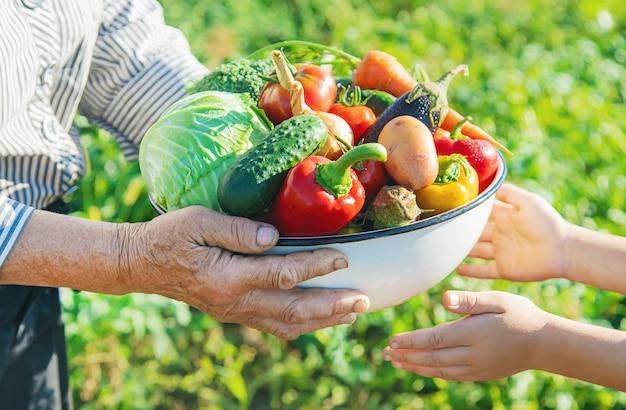 Criança e avó no jardim com legumes nas mãos.