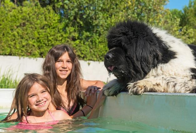 Criança e newfoundland cachorro na piscina