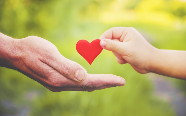 Criança e pai têm um coração nas mãos. foco seletivo.
