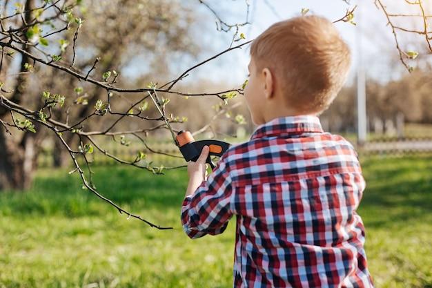 Criança em idade escolar usando uma camisa xadrez fazendo trabalhos de manutenção podando árvores com tesouras de podar