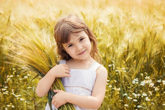 Criança em um campo de trigo. foco seletivo. natureza