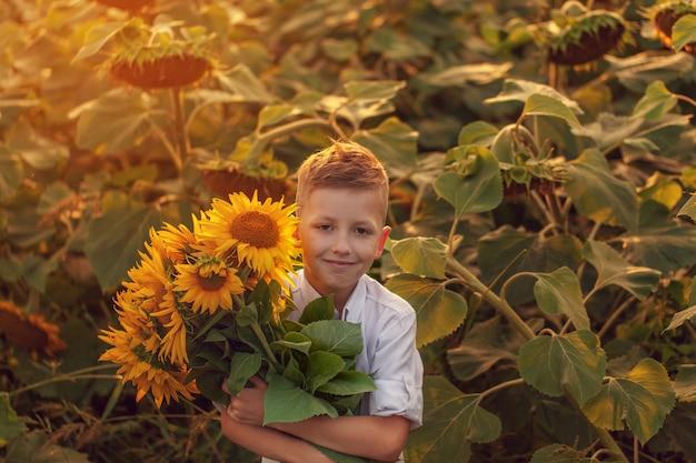 Criança feliz com buquê de girassóis lindos no campo de girassol verão na sunset. dia das mães