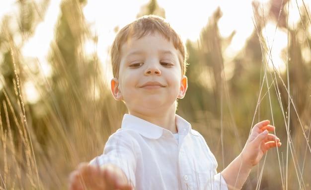 Criança feliz e fofa em um campo brincando com picos naturais ao pôr do sol de verão. edição de cores suaves.
