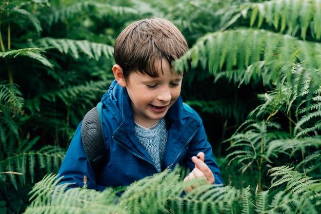 Criança feliz em pé perto de uma árvore de samambaia
