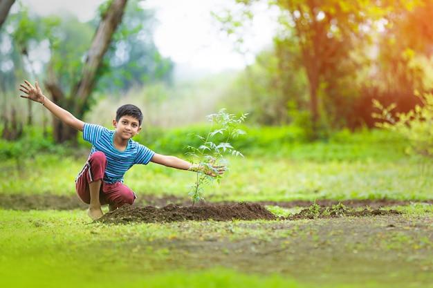 Criança indiana, plantando uma árvore