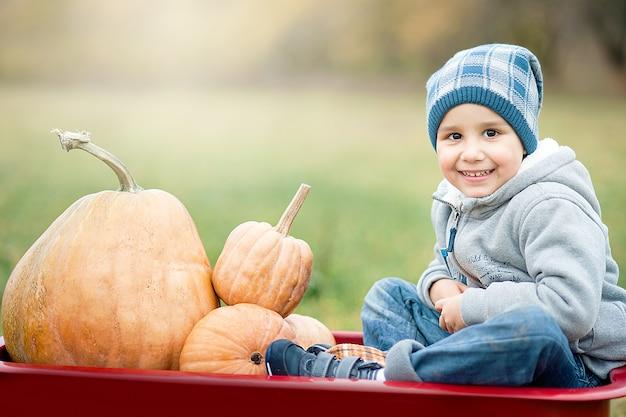 Criança menino feliz no canteiro de abóboras em dia frio de outono