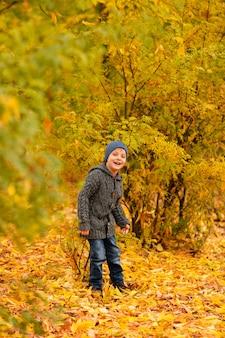 Criança na floresta de outono amarela e dourada