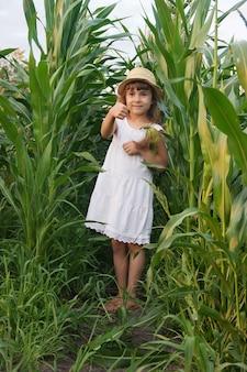 Criança no campo de milho. um pequeno agricultor. foco seletivo.