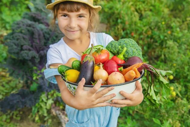 Criança no jardim com legumes nas mãos dele.
