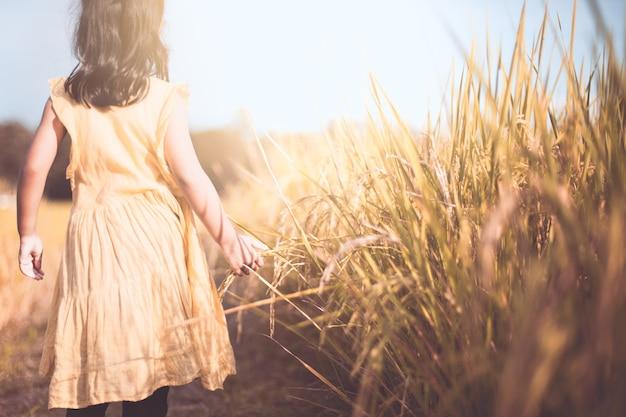 Criança pequena andando e tocando arroz jovem com ternura no arrozal em tom de cor vintage