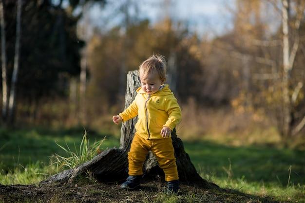 Criança pequena com uma jaqueta amarela aprende a andar em um parque de outono, verão indiano.