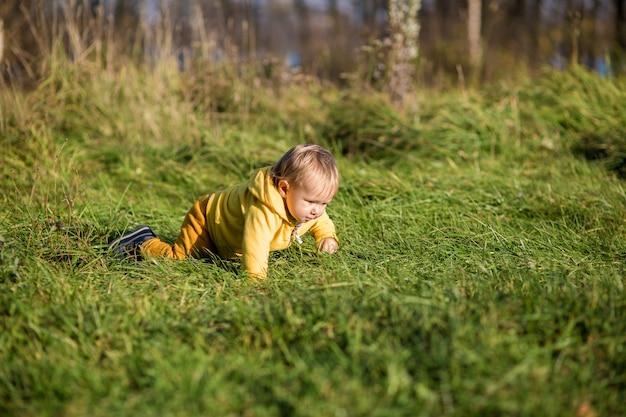 Criança pequena com uma jaqueta amarela rasteja na grama em um parque de outono, verão indiano.