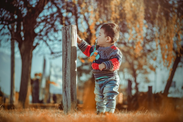 Criança pequena no parque