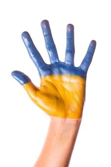 Criança pintada à mão com as cores da bandeira da ucrânia, isolada no branco