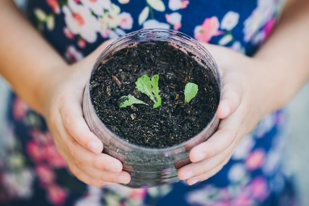 Criança plantando broto de vegetais em uma garrafa reutilizada de plástico reciclado.