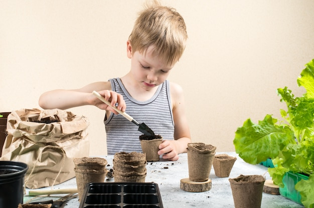 Criança plantando sementes em vasos de turfa
