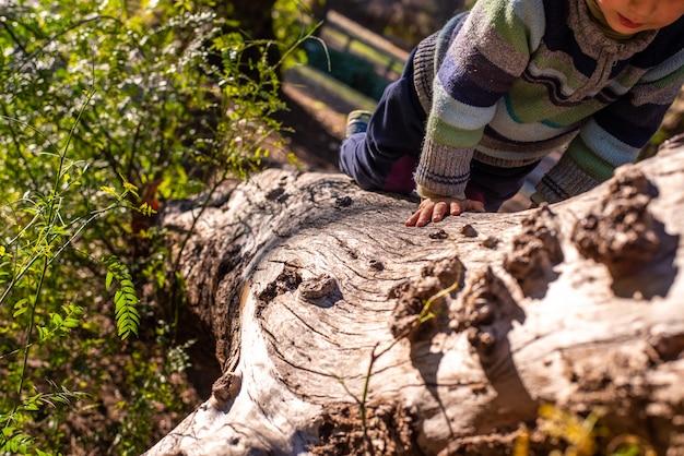 Criança que senta-se em um grande tronco caído ideal para jogar ao ar livre.
