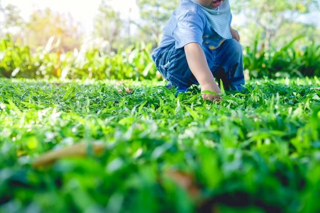 Criança, tocando, com, folhas