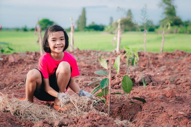 Crianças a plantar a árvore na terra fundo desfocado