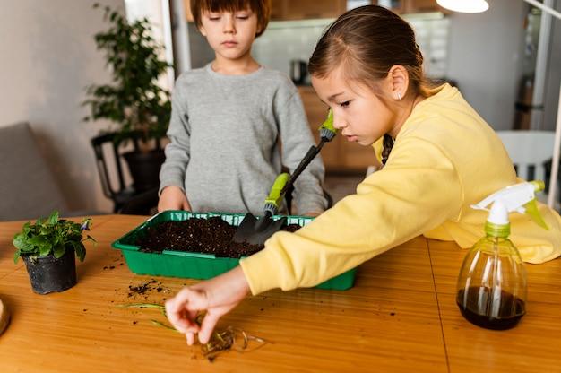 Crianças aprendendo a plantar sementes em casa