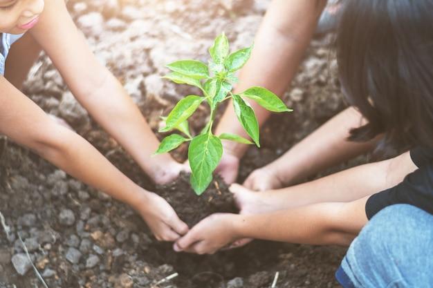 Crianças asiáticas que plantam a árvore pequena com mater no solo. conceito mundo verde