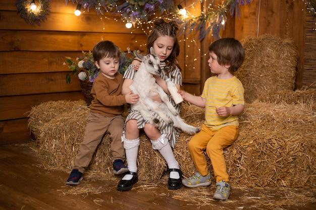 Crianças brincando e alimentando cabra com garrafa de leite na fazenda no celeiro