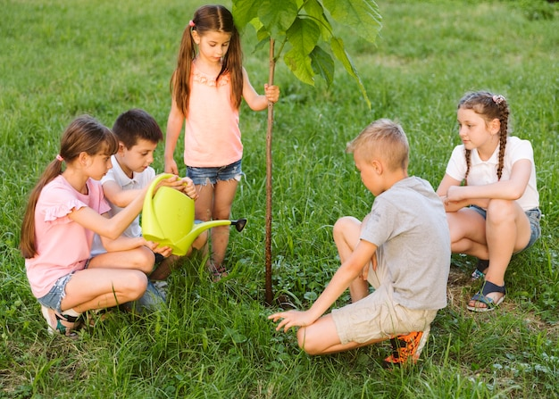 Crianças chapeando uma árvore juntos