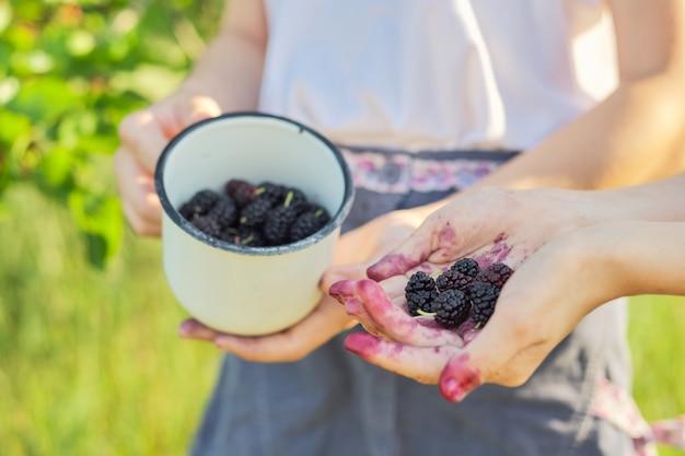 Crianças com colheita de frutas na caneca, amoreira no jardim de verão