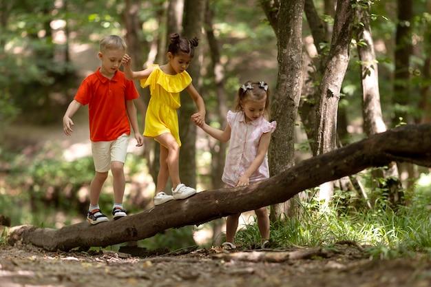 Crianças curiosas participando de uma caça ao tesouro na floresta