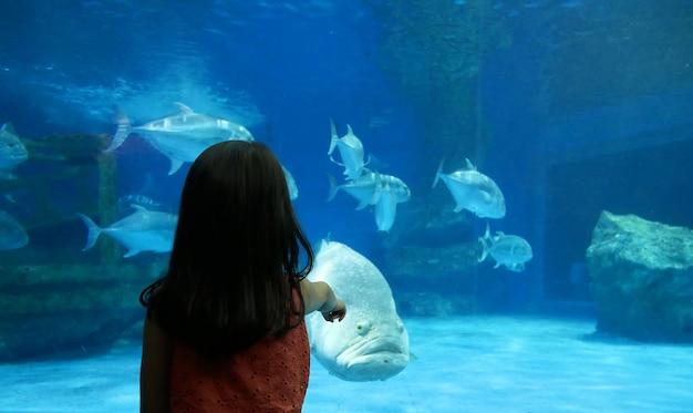 Crianças, desfrutando, submarinas, vida