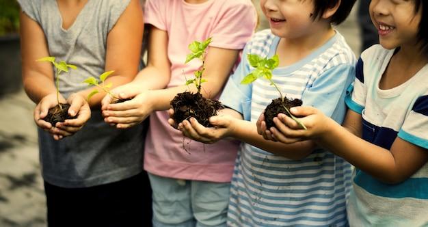 Crianças do jardim de infância com plantas em suas mãos