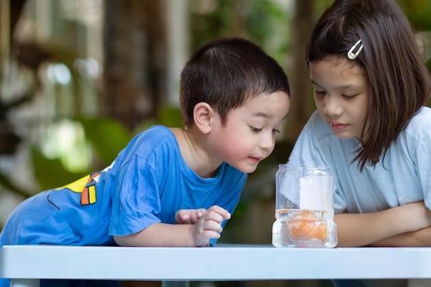 Crianças em idade pré-escolar reagindo ao experimento científico