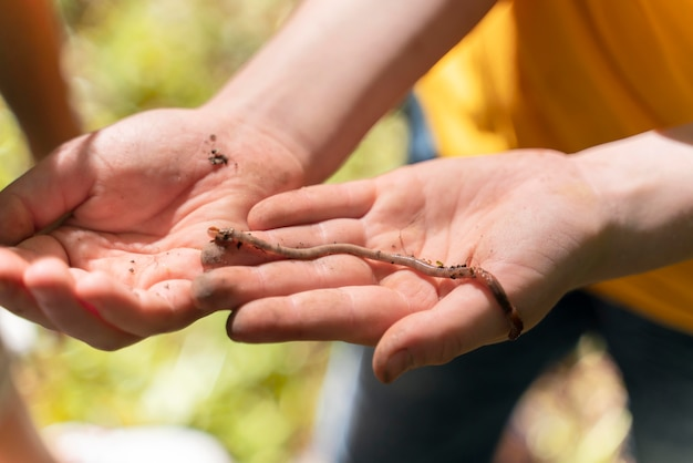 Crianças explorando a natureza juntas