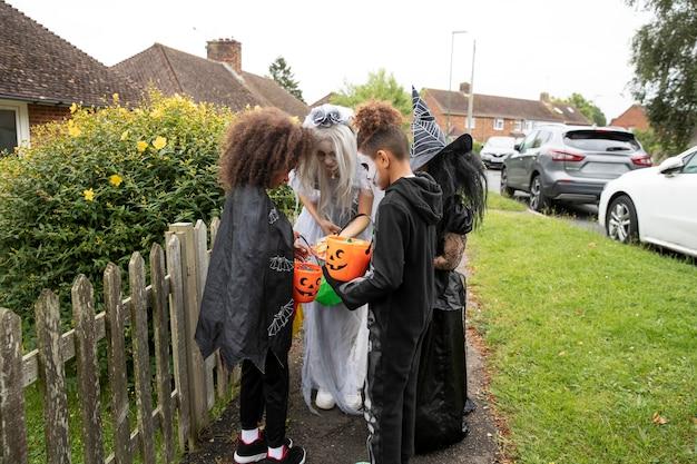 Crianças fantasiadas olhando seus doces no dia das bruxas