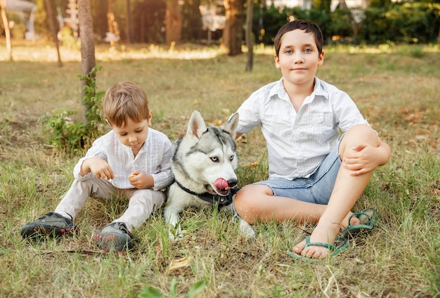 Crianças fofas com cachorro andando no parque em dia ensolarado de verão.