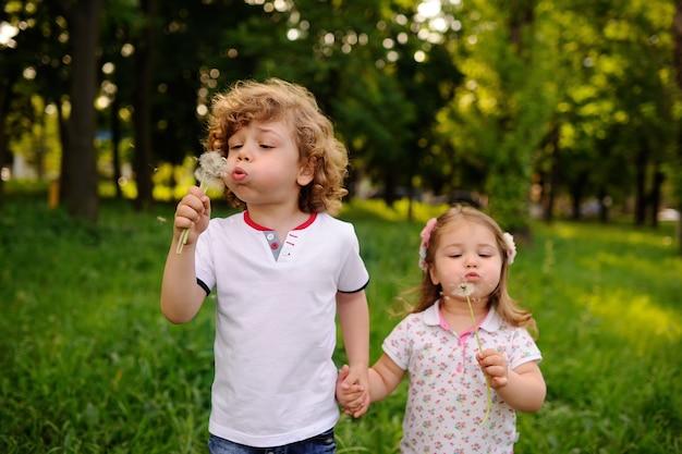 Crianças, ligado, parque verde, soprando, dandelions