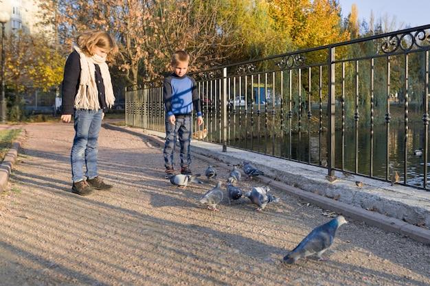 Crianças menino e menina alimentando pombos no parque outono