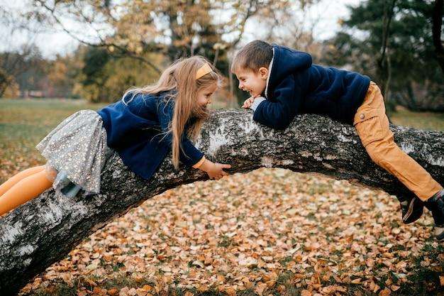 Crianças na árvore do parque