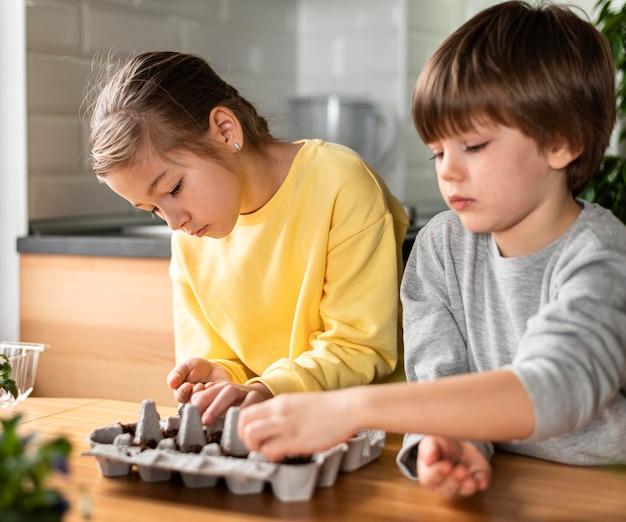 Crianças pequenas em casa plantando sementes