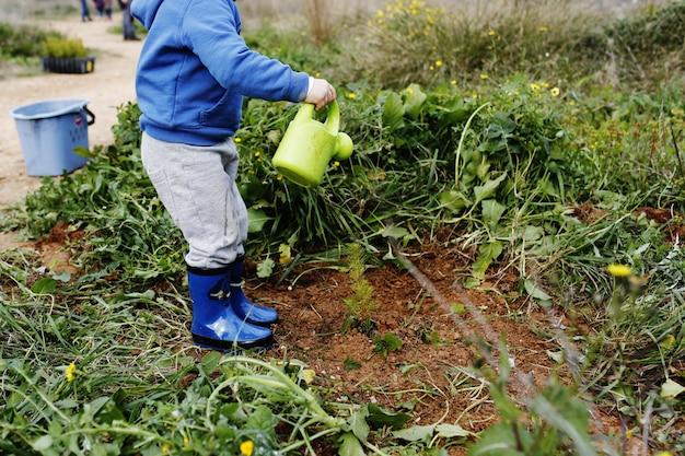 Crianças plantando árvores na floresta e cultivando plantas cooperando entre si