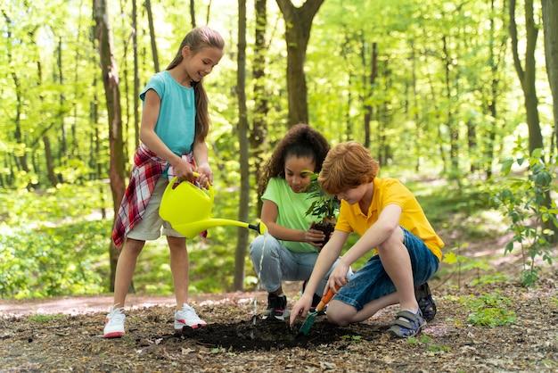 Crianças plantando juntas na floresta