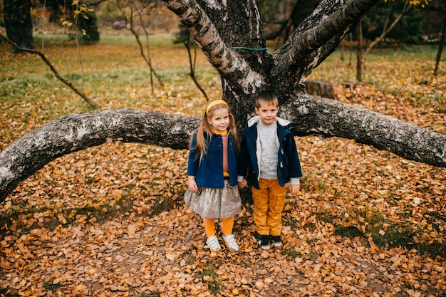 Crianças posando no parque outono