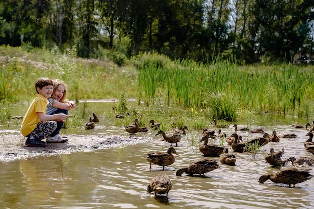 Crianças que alimentam patos no lago abandonado.