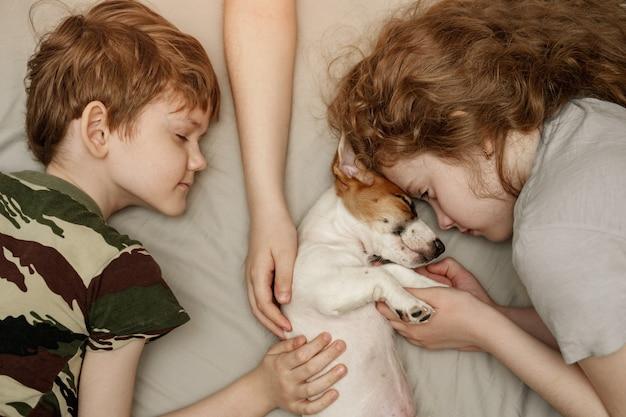 Crianças que colocam e que abraçam um cachorrinho jack russell terrier.