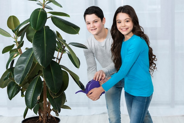 Crianças que regam a flor junto