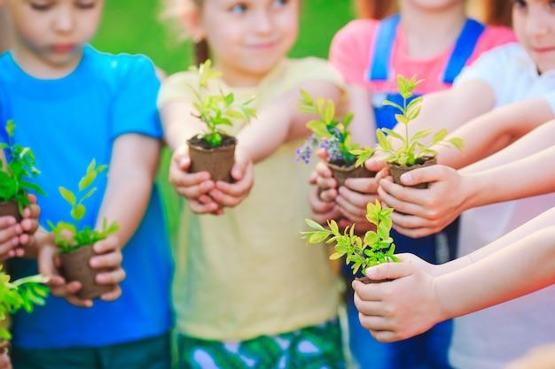 Crianças segurando plantas em vasos