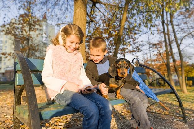 Crianças, sentado no banco no parque com cachorro, olha para smartphone