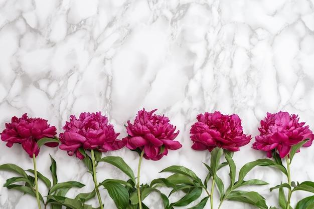 Criativa vista superior plana com flores roxas frescas, peônias vermelhas